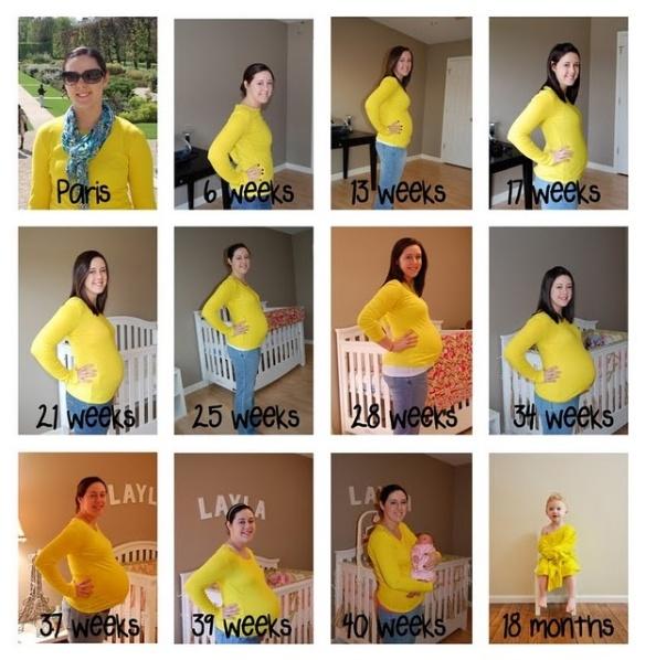 evolucion embarazo 6